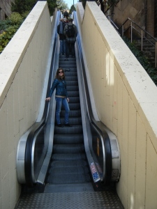 One of the many escalators