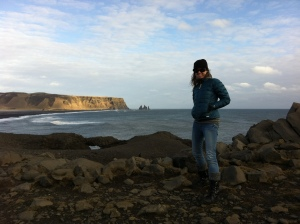 On the cliffs of Cape Dyrholaey