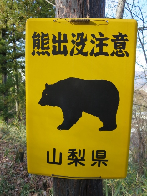 "guessing this sign says ""caution bears"""