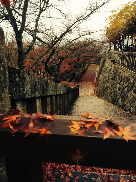 beautiful fall colors at kiyomizu temple