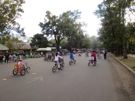 lots of kids biking in the park