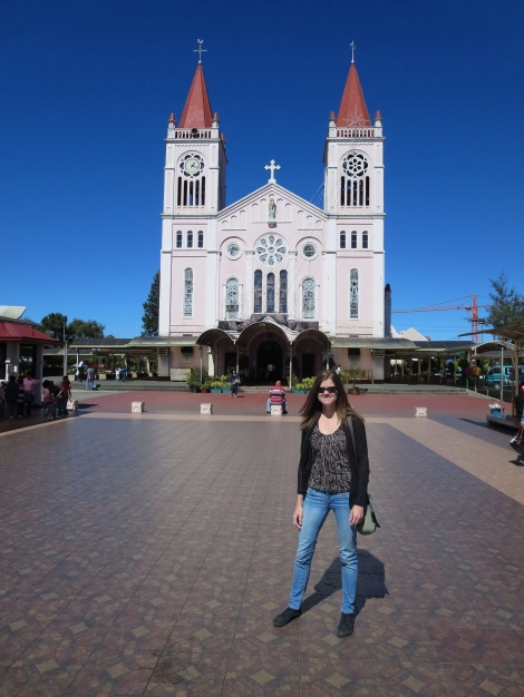 the baguio cathedral