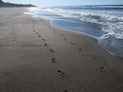 making footprints in the sand