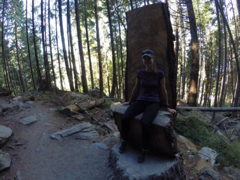 taking a breather on this cool chair built into a tree stump