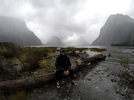 in milford sound