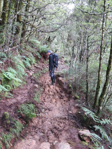 long stretches of muddy trail