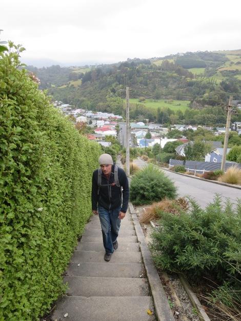 it's easier to walk up the stair-sidewalk