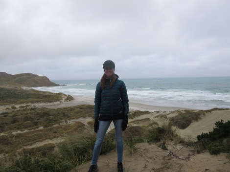 viewpoint over sandfly bay