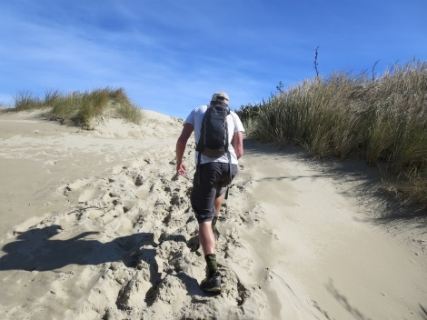 hiking up to the sandfly bay viewpoint