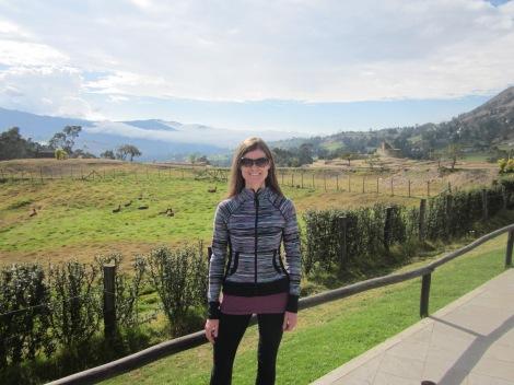 in ingapirca, a field of llamas behind me