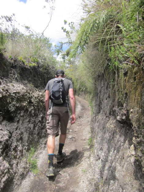 sections of the trail went straight through the mountainside like this